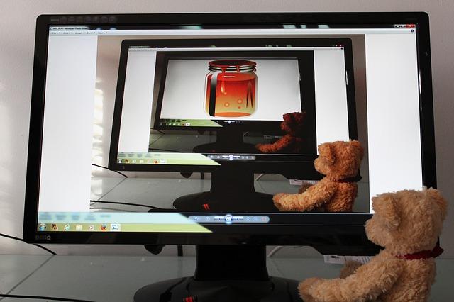 medvídek u monitoru