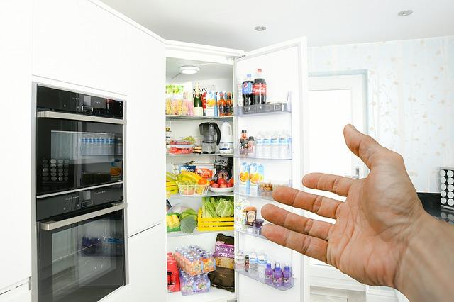 nacpaná lednice